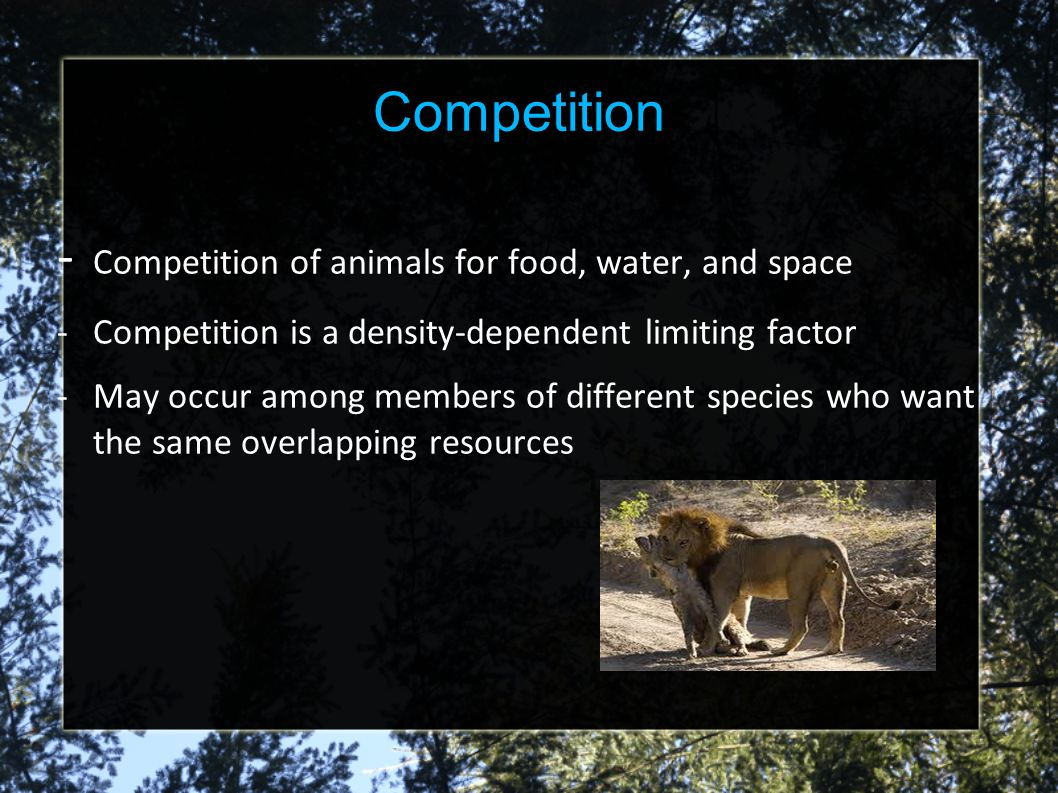 - Competition of animals for food, water, and space