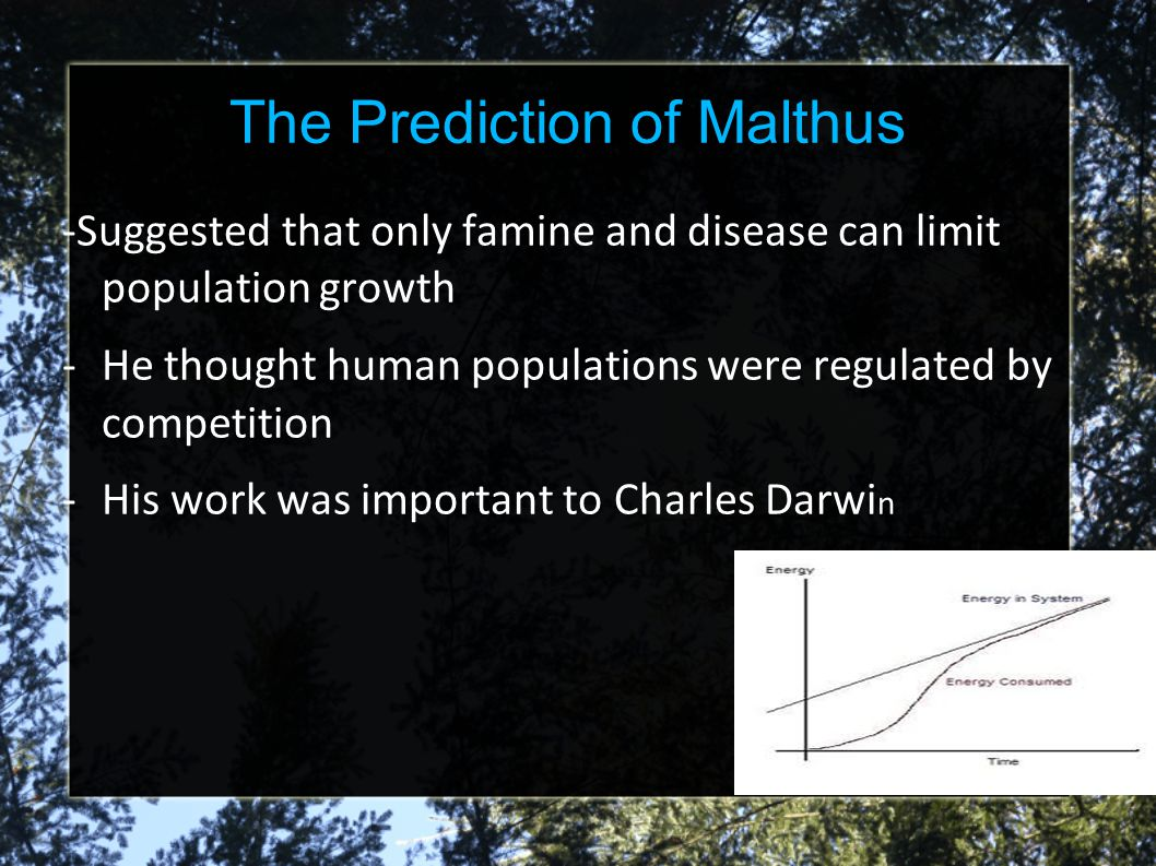 The Prediction of Malthus