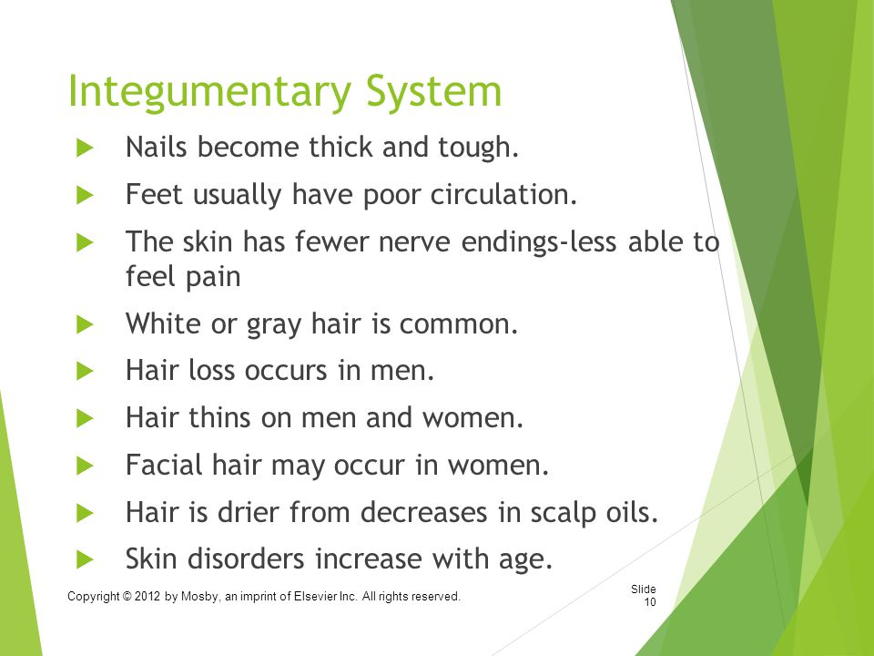 Integumentary System Nails become thick and tough.