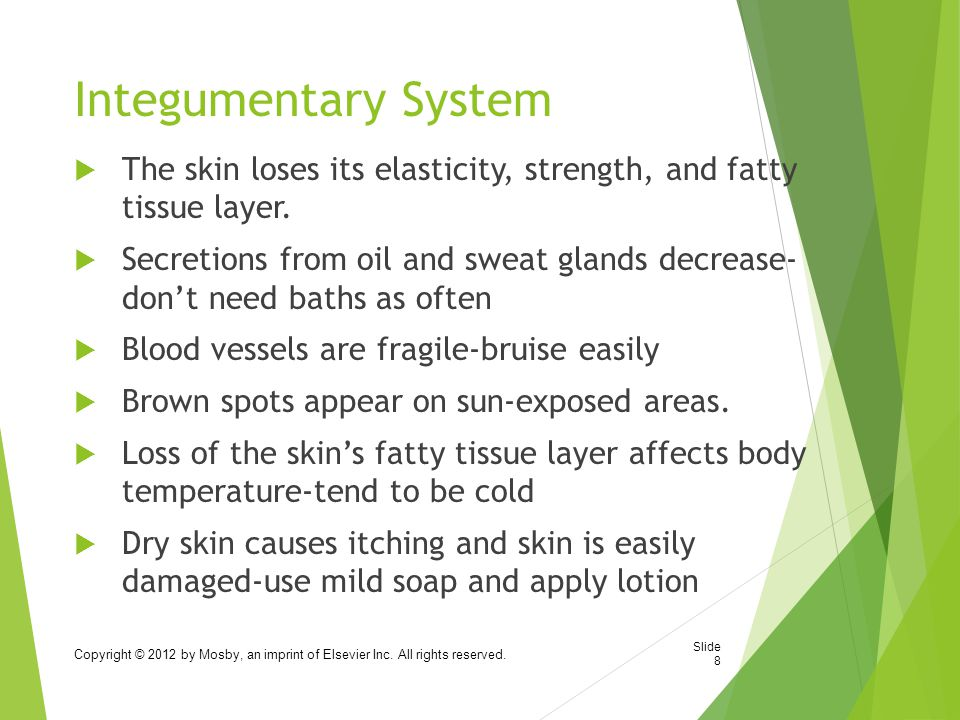 Integumentary System The skin loses its elasticity, strength, and fatty tissue layer.