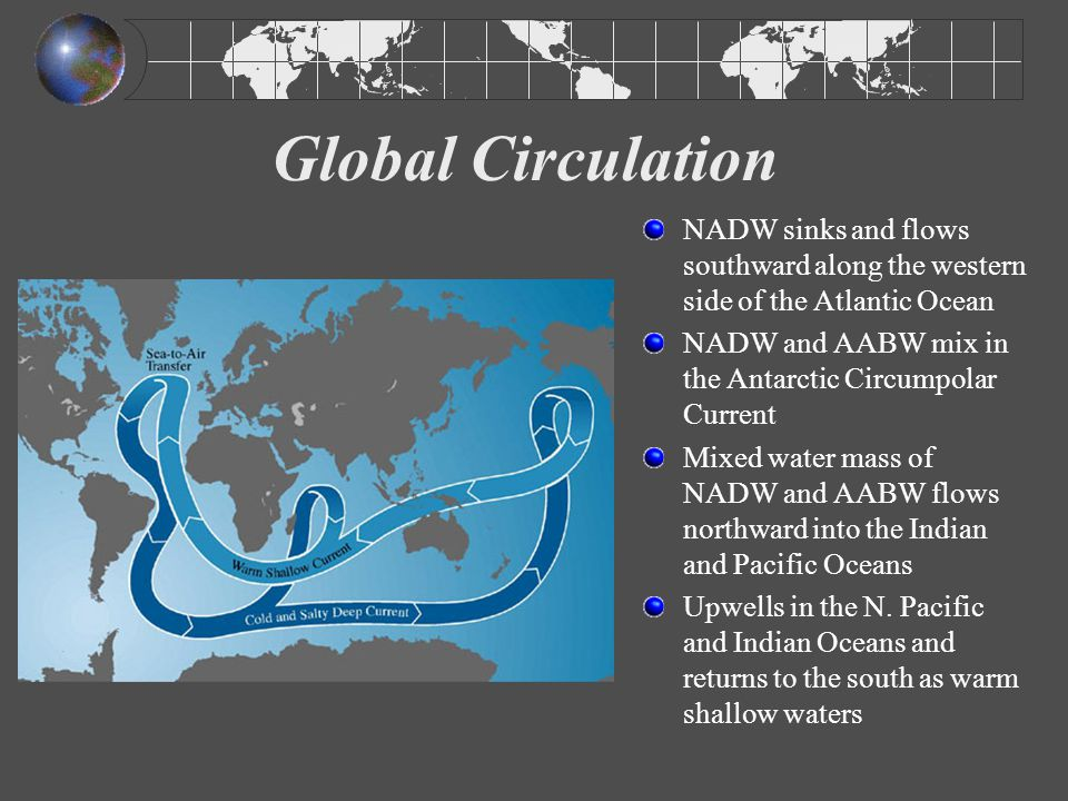 Global Circulation NADW sinks and flows southward along the western side of the Atlantic Ocean.