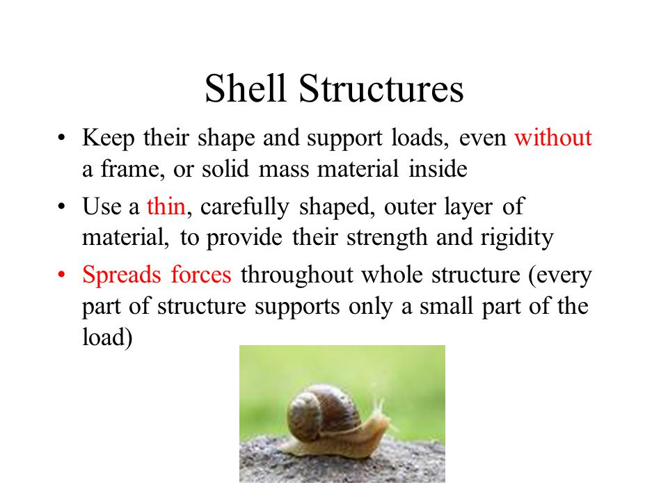 Shell Structures Keep their shape and support loads, even without a frame, or solid mass material inside.