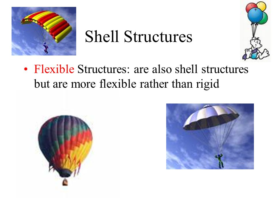 Shell Structures Flexible Structures: are also shell structures but are more flexible rather than rigid.