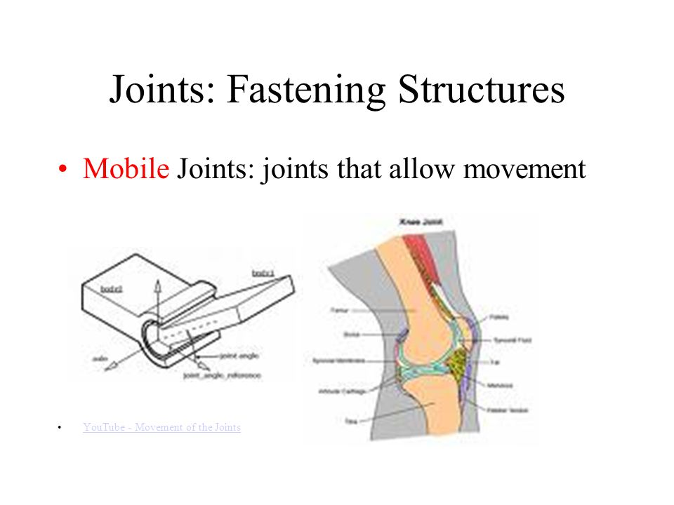 Joints: Fastening Structures