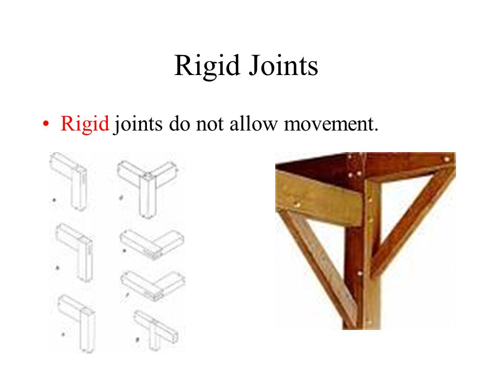Rigid Joints Rigid joints do not allow movement.