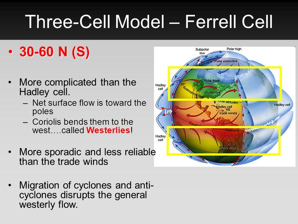 Three-Cell Model – Ferrell Cell