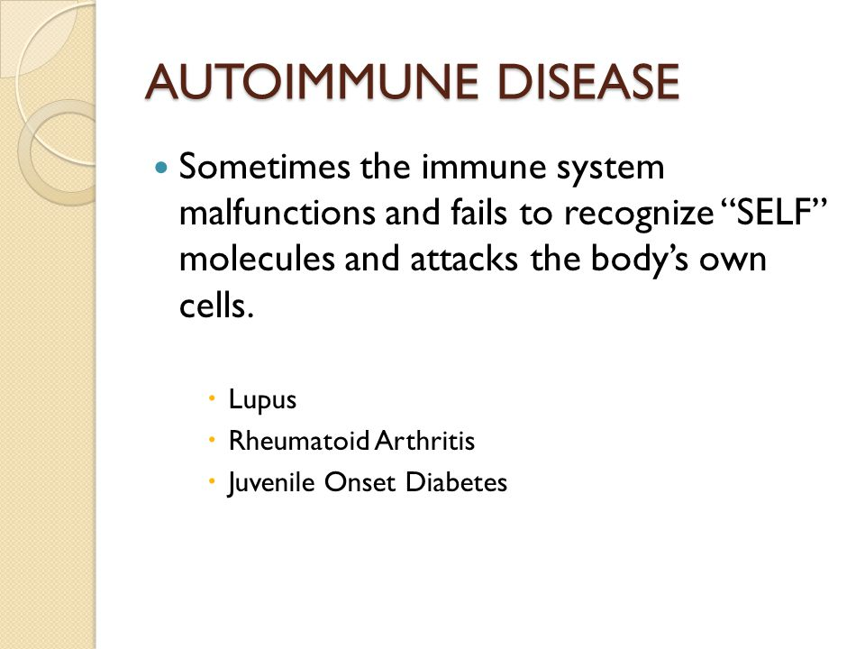 AUTOIMMUNE DISEASE Sometimes the immune system malfunctions and fails to recognize SELF molecules and attacks the body's own cells.