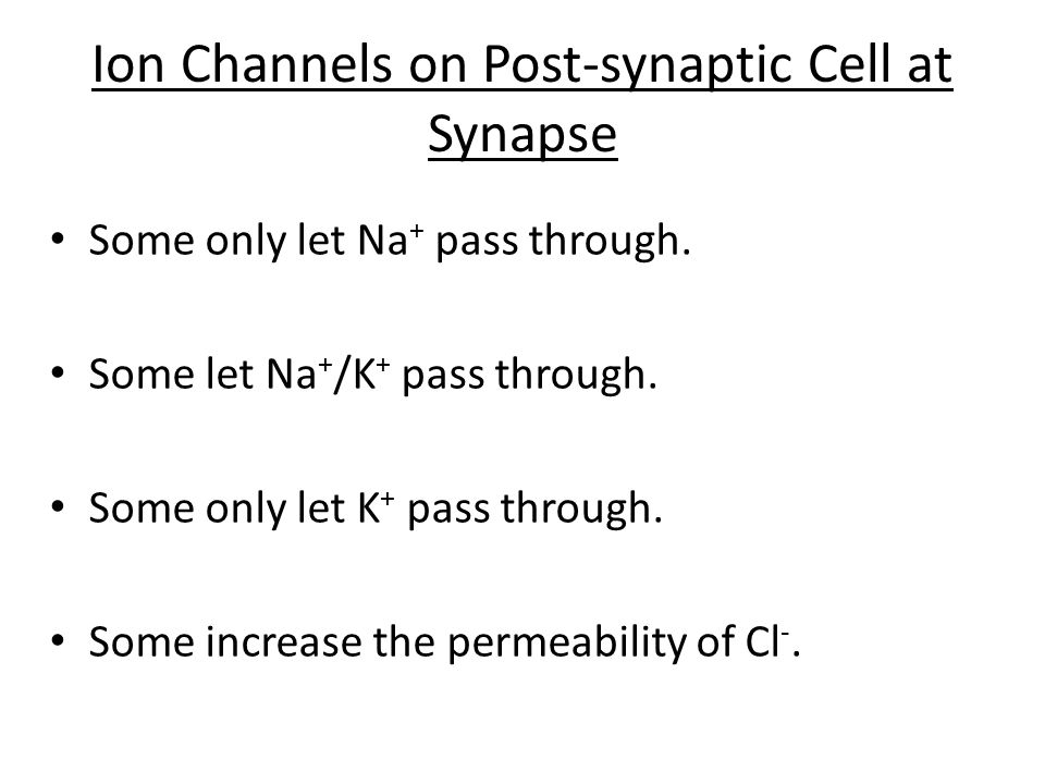 Ion Channels on Post-synaptic Cell at Synapse