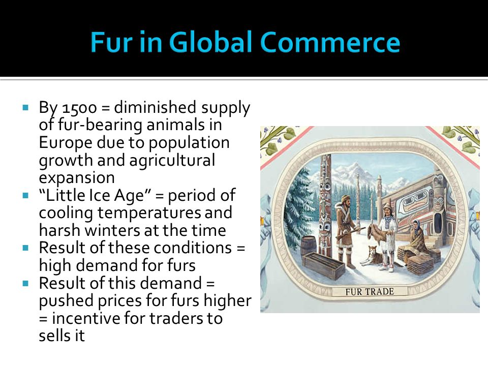 Fur in Global Commerce By 1500 = diminished supply of fur-bearing animals in Europe due to population growth and agricultural expansion.