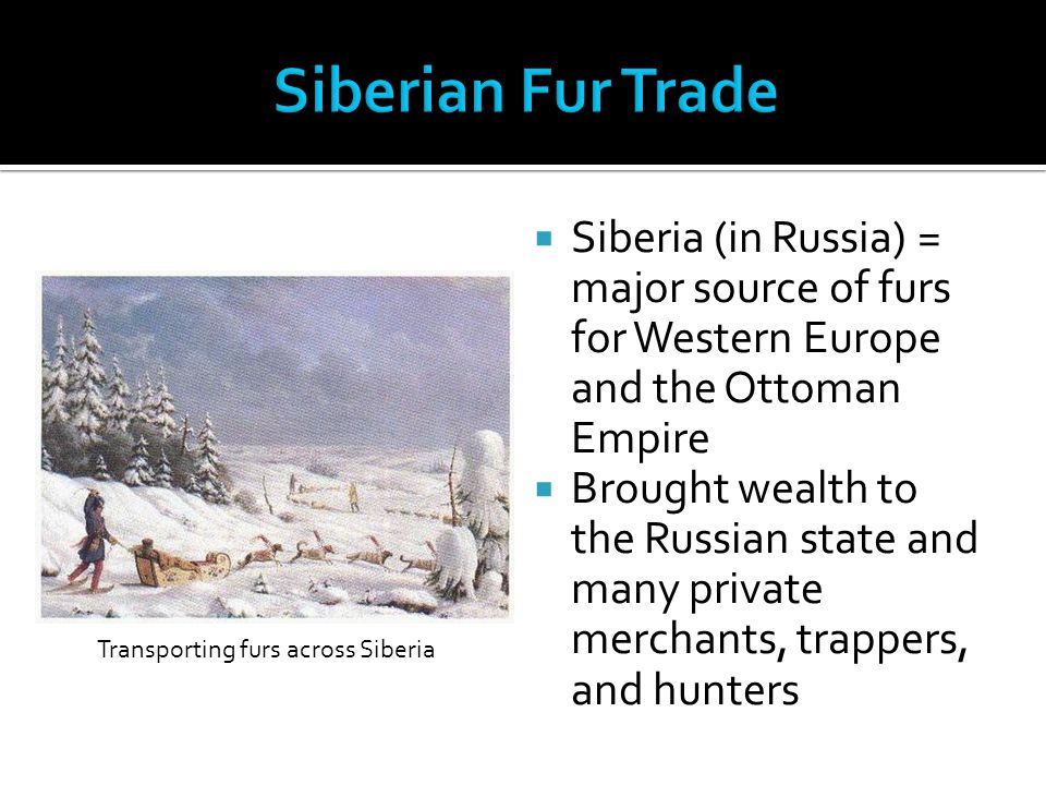 Transporting furs across Siberia