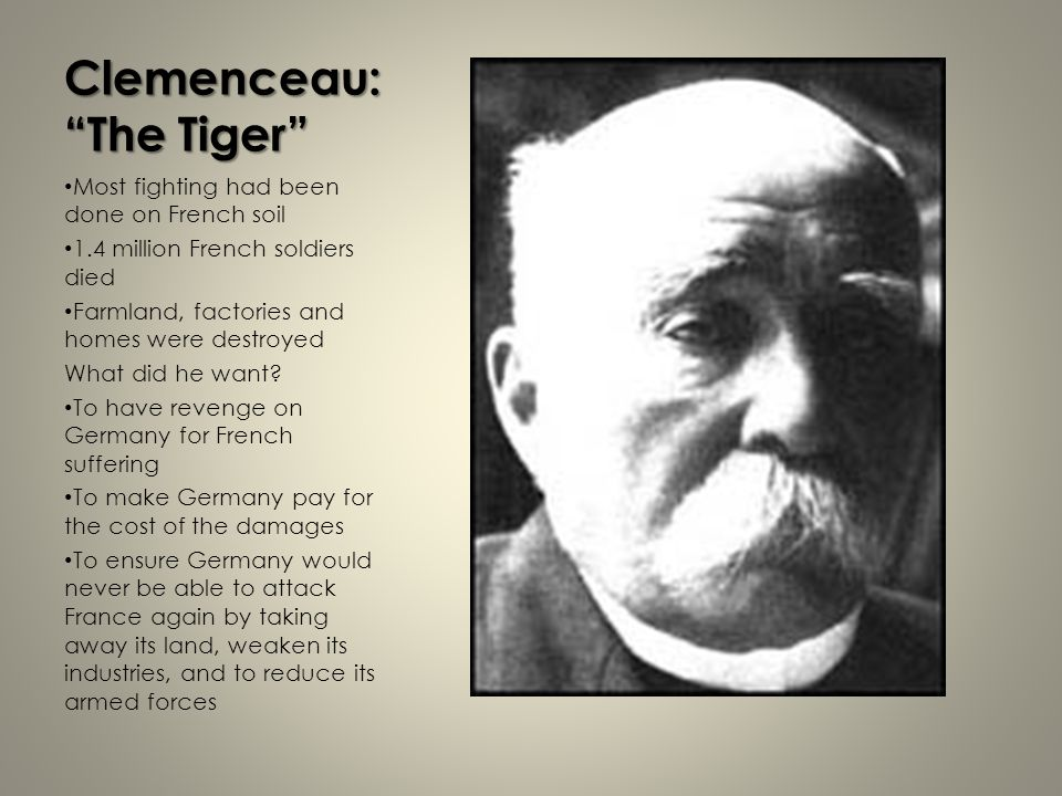Clemenceau: The Tiger