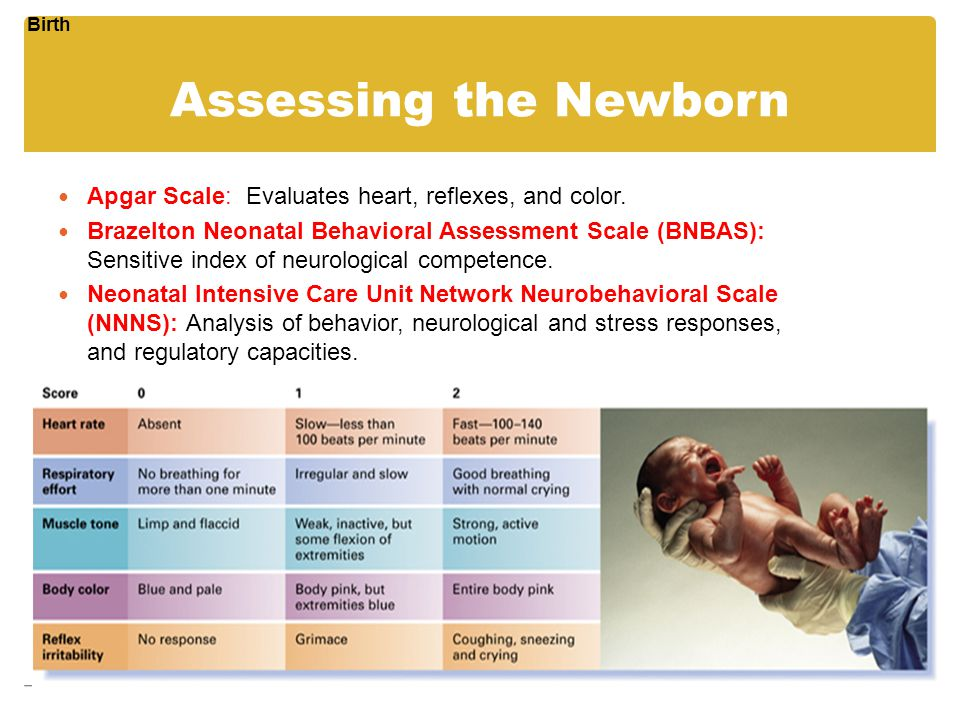 Birth Assessing the Newborn. Apgar Scale: Evaluates heart, reflexes, and color.