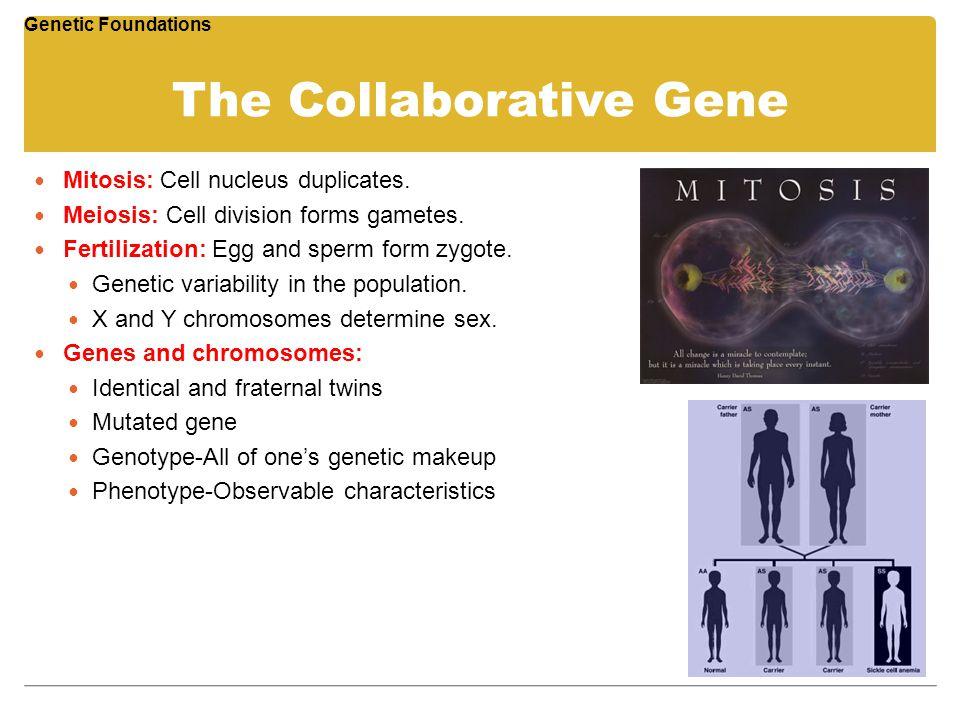The Collaborative Gene