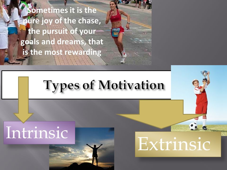 Types of Motivation Intrinsic Extrinsic