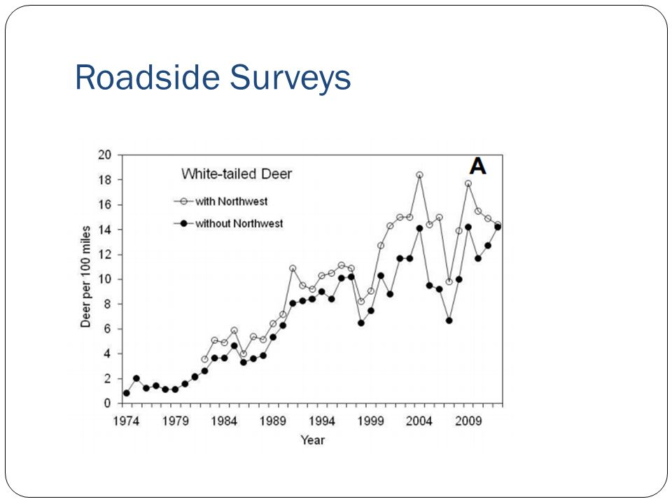 Roadside Surveys