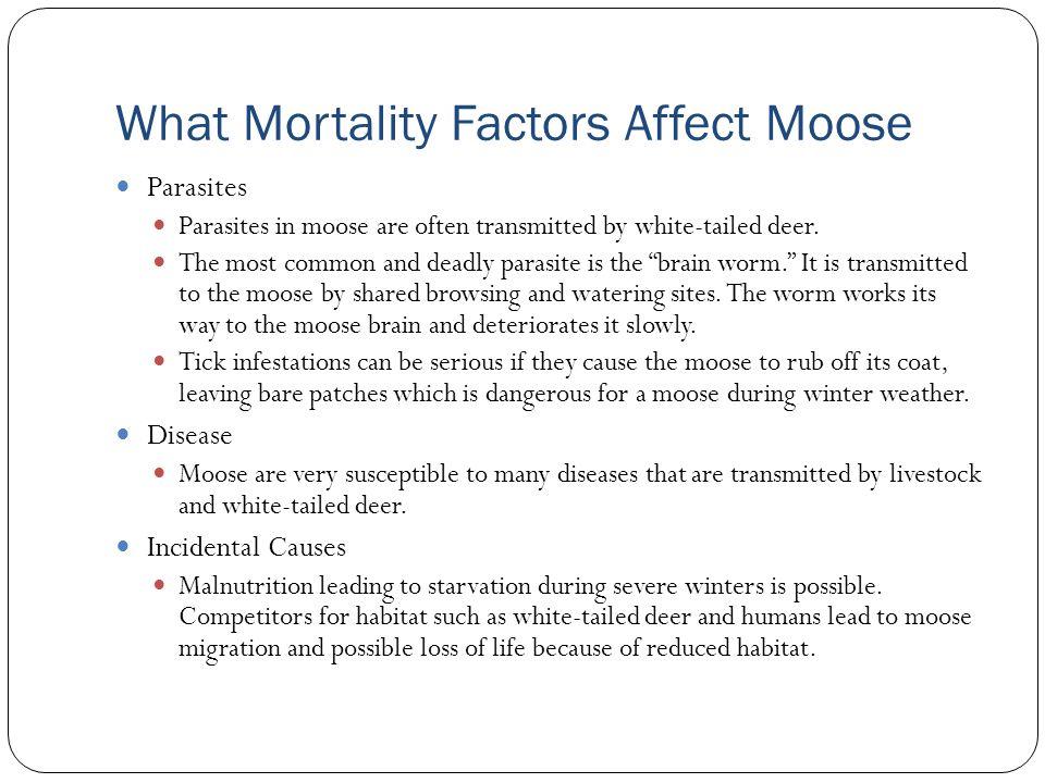 What Mortality Factors Affect Moose