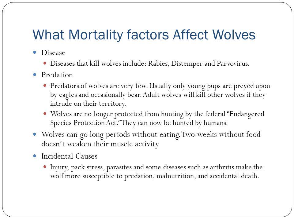 What Mortality factors Affect Wolves