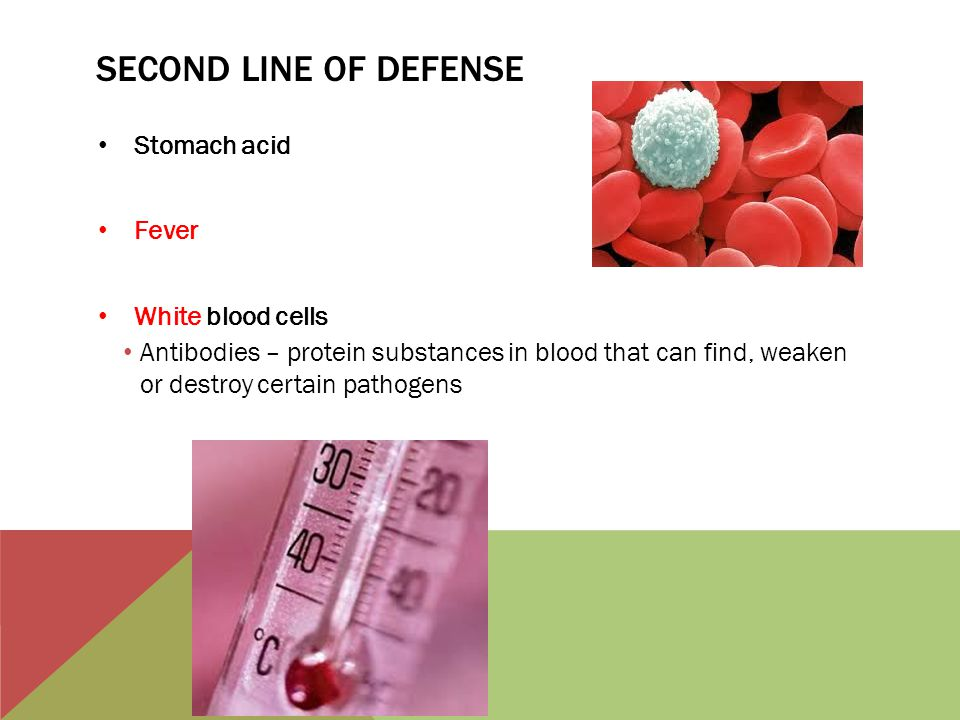 Second line of defense Stomach acid Fever White blood cells