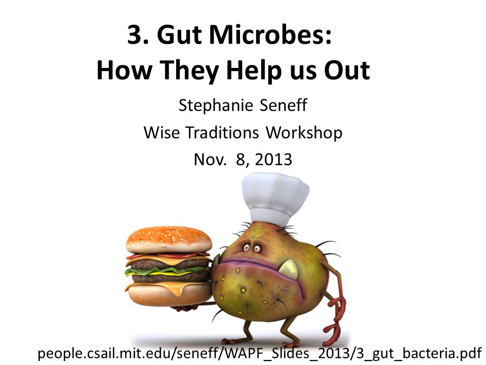 3. Gut Microbes: How They Help us Out