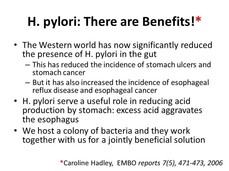 H. pylori: There are Benefits!*