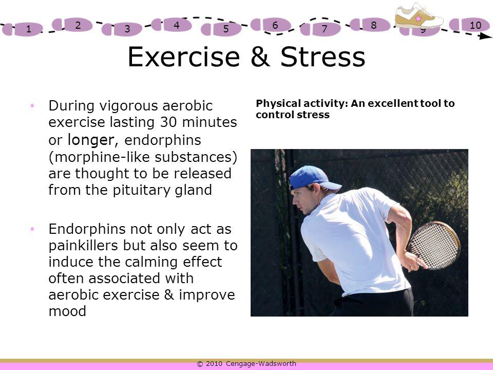 Exercise & Stress