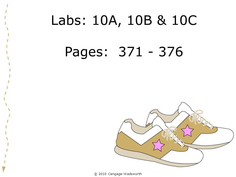 Labs: 10A, 10B & 10C Pages: 371 - 376