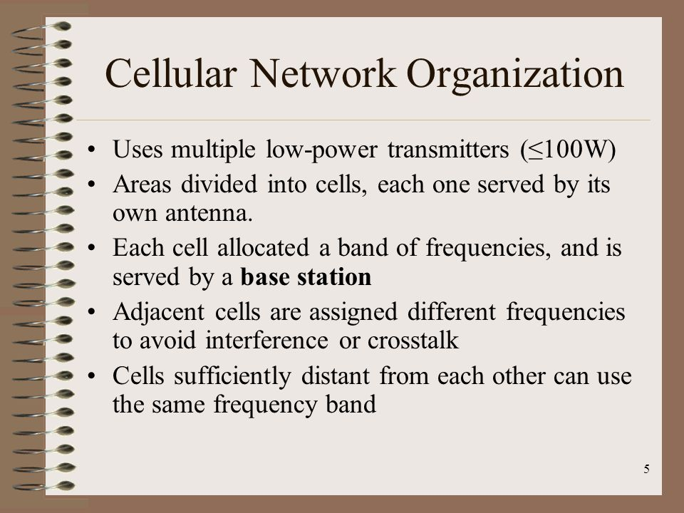 Cellular Network Organization
