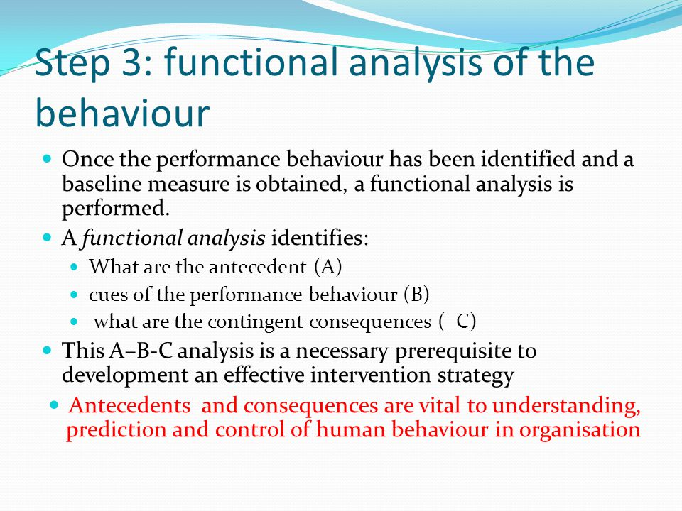 Step 3: functional analysis of the behaviour