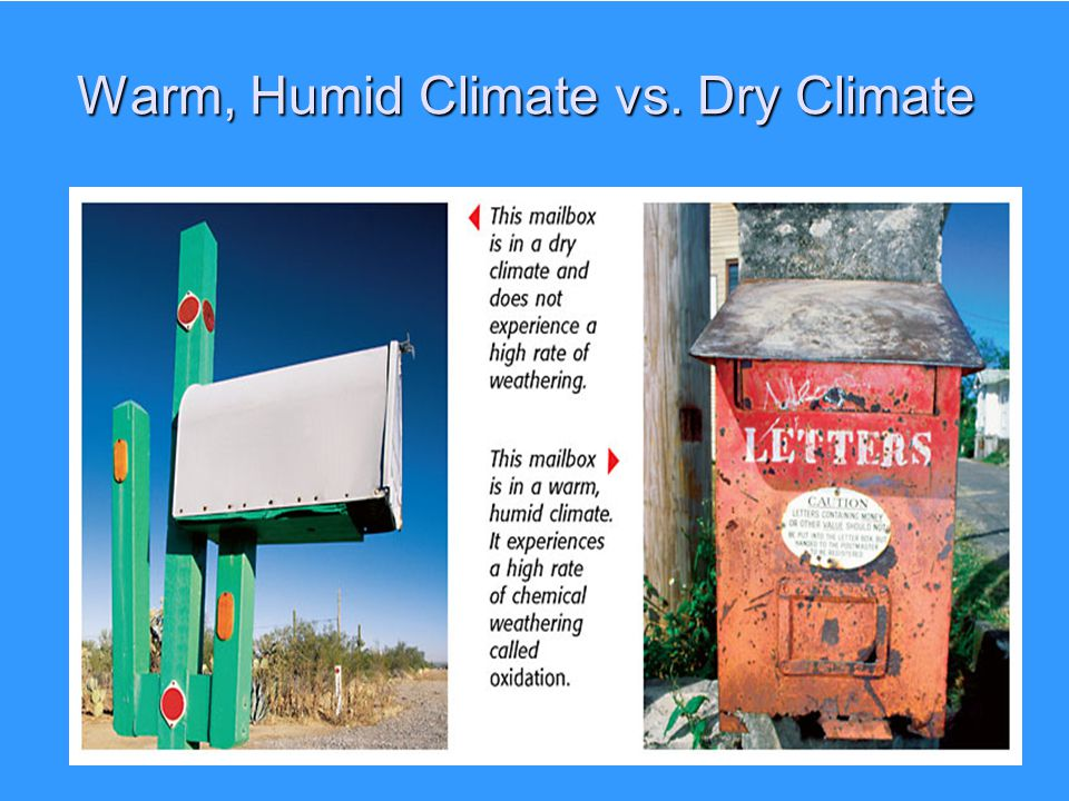 Warm, Humid Climate vs. Dry Climate