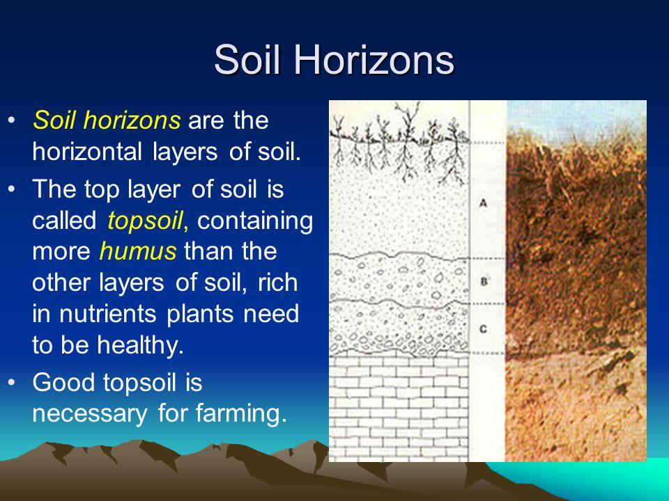 Soil Horizons Soil horizons are the horizontal layers of soil.