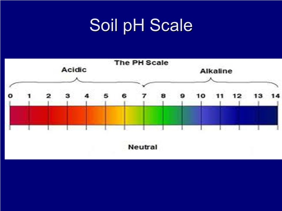 Soil pH Scale