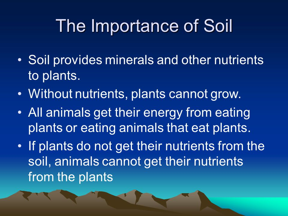 The Importance of Soil Soil provides minerals and other nutrients to plants. Without nutrients, plants cannot grow.