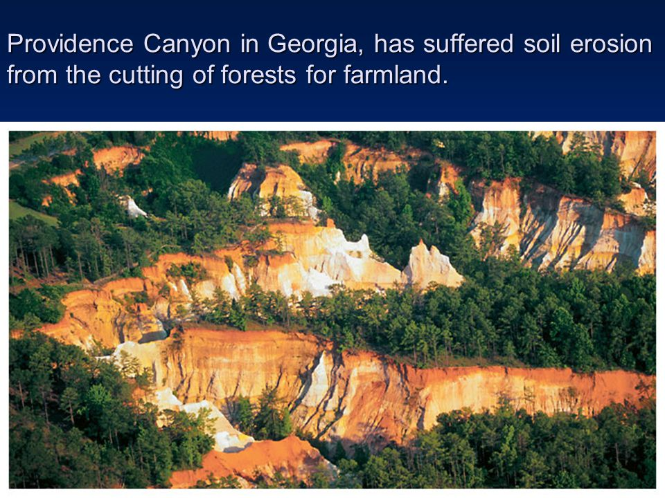 Providence Canyon in Georgia, has suffered soil erosion from the cutting of forests for farmland.