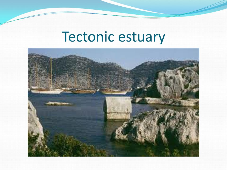 Tectonic estuary