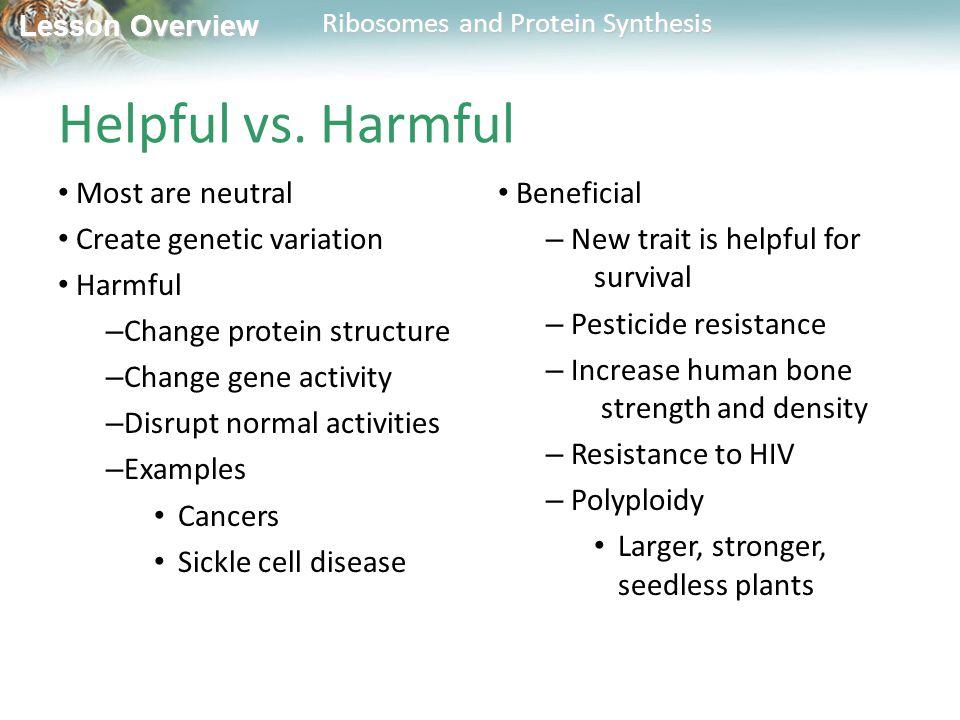 Helpful vs. Harmful Most are neutral Create genetic variation Harmful
