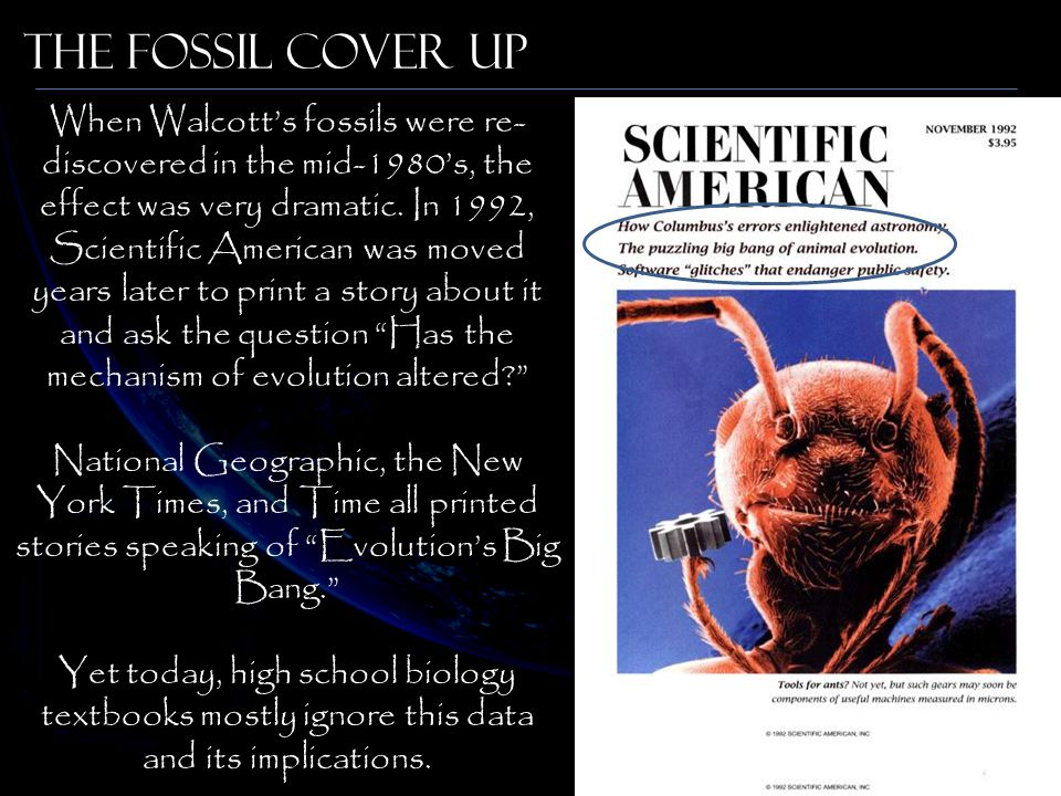 The Fossil Cover Up