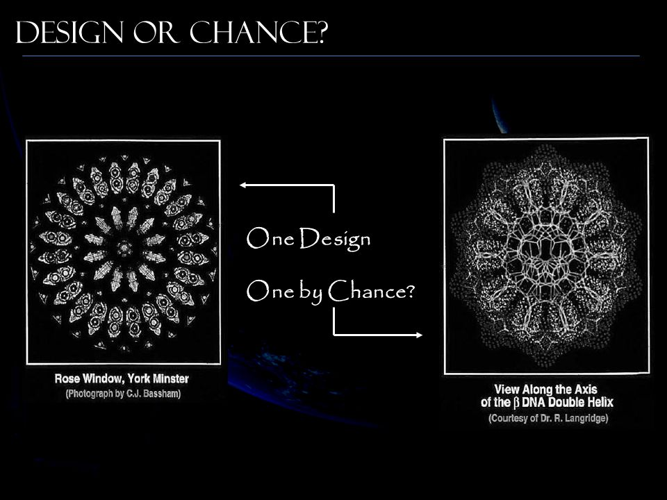 Design or Chance One Design One by Chance