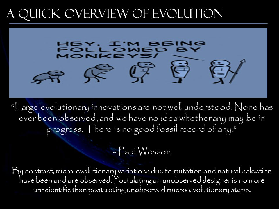A Quick Overview of Evolution