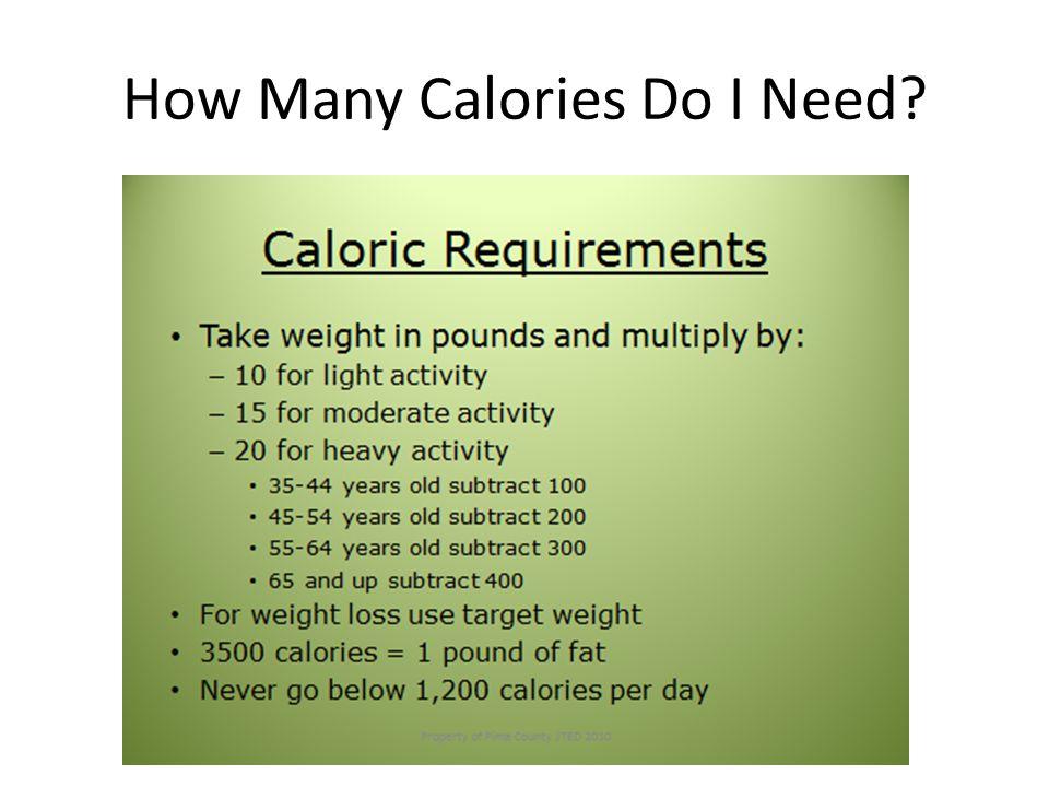 How Many Calories Do I Need