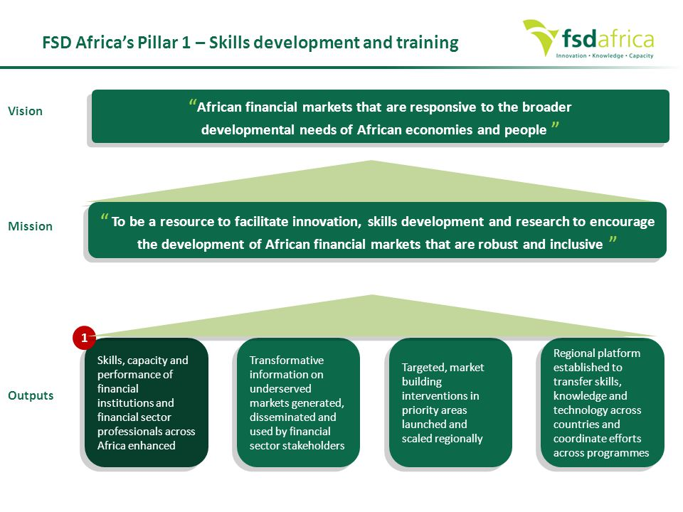 FSD Africa's Pillar 1 – Skills development and training