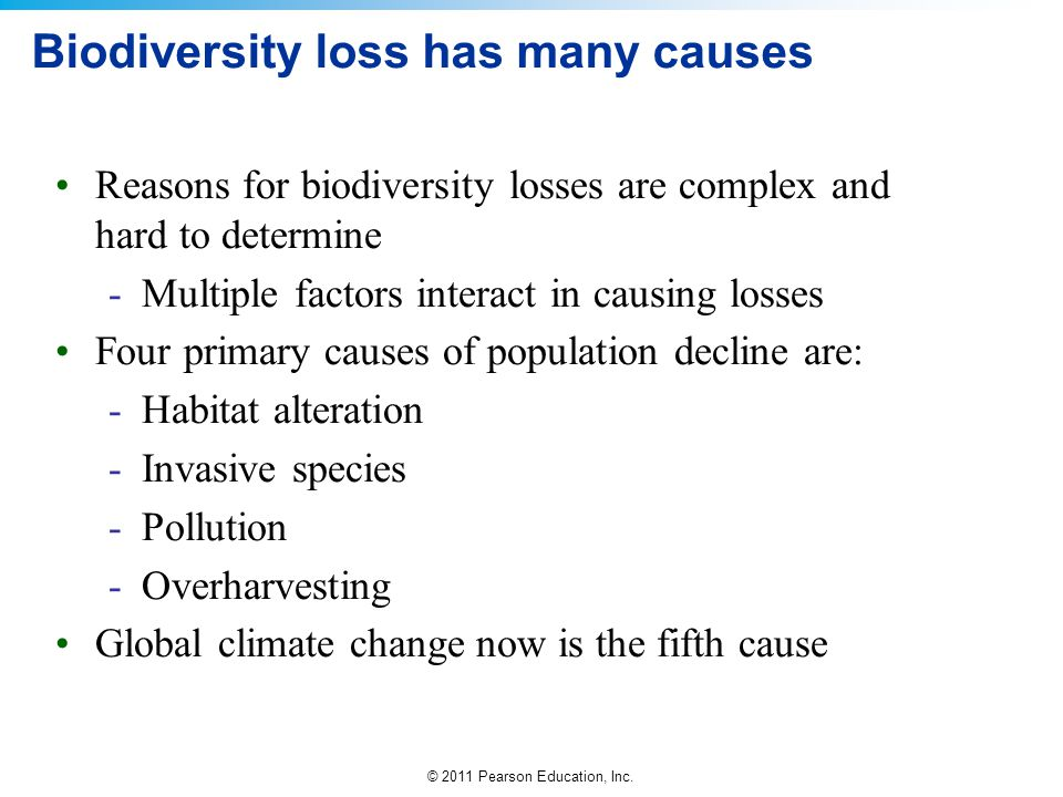 Biodiversity loss has many causes
