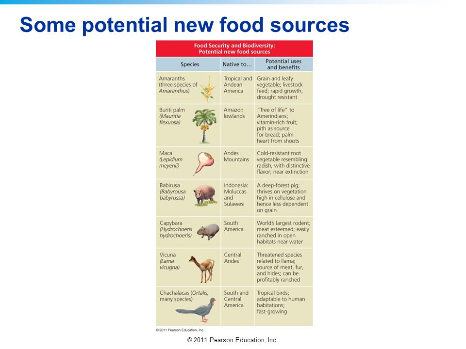 Some potential new food sources