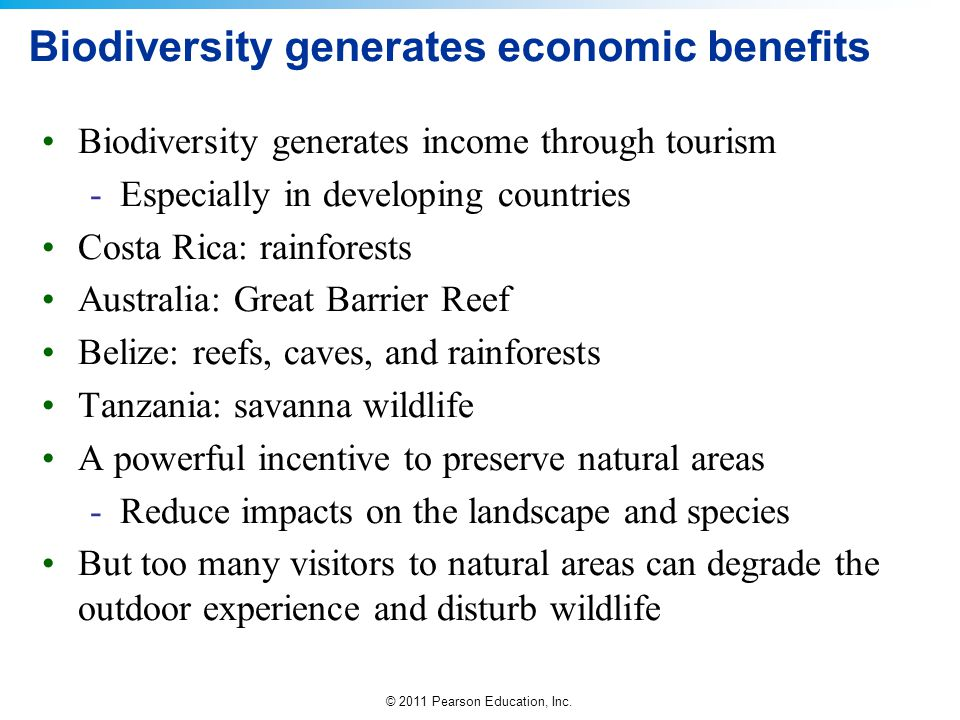 Biodiversity generates economic benefits