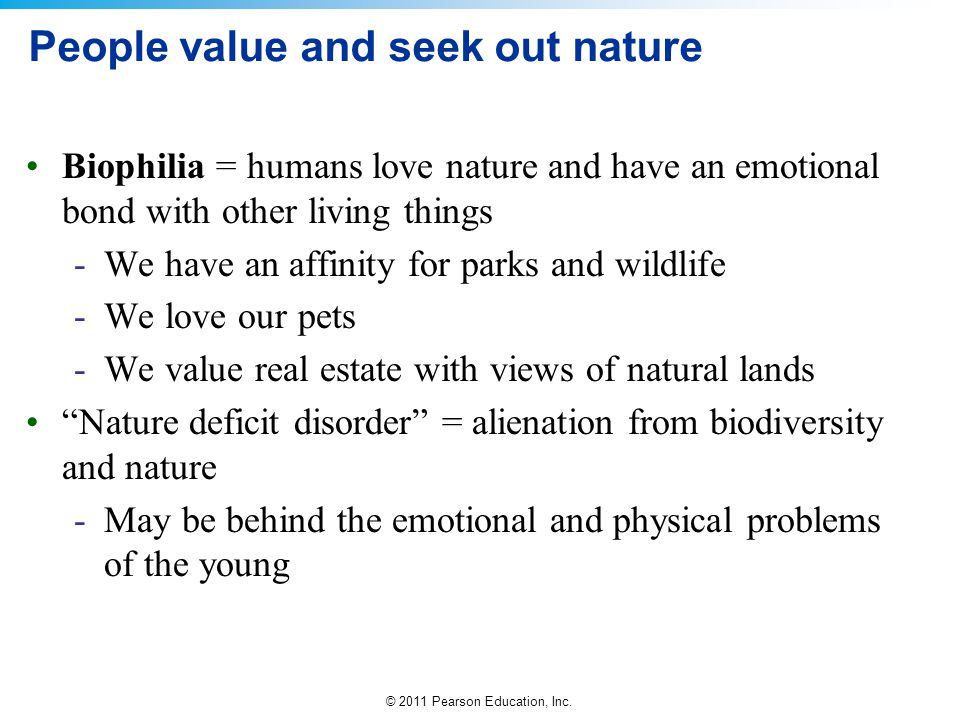 People value and seek out nature