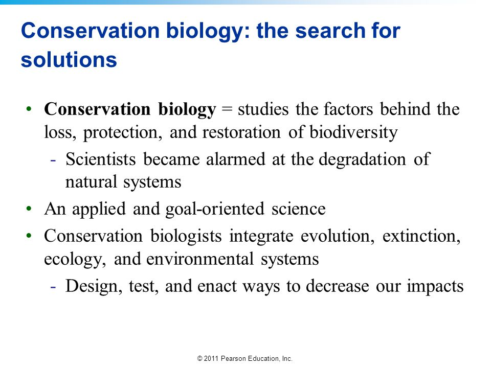 Conservation biology: the search for solutions