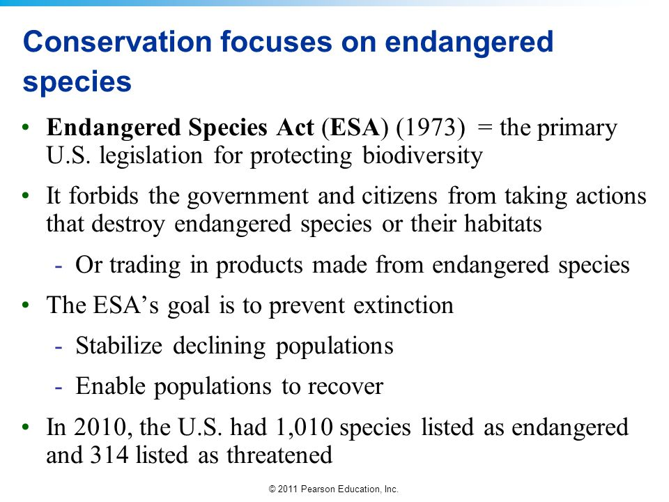 Conservation focuses on endangered species