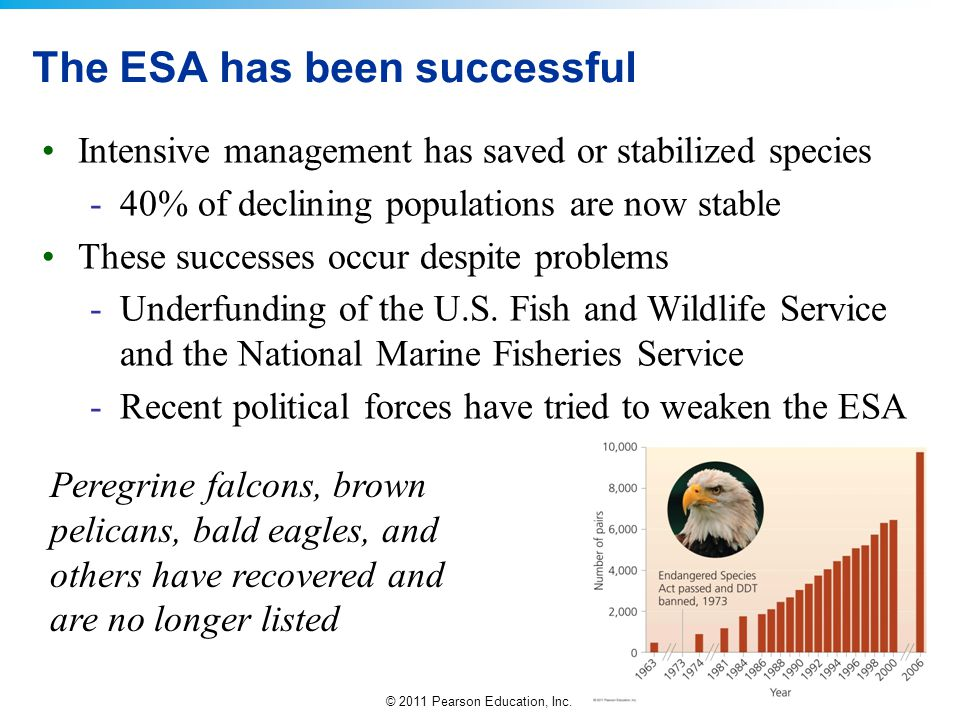 The ESA has been successful