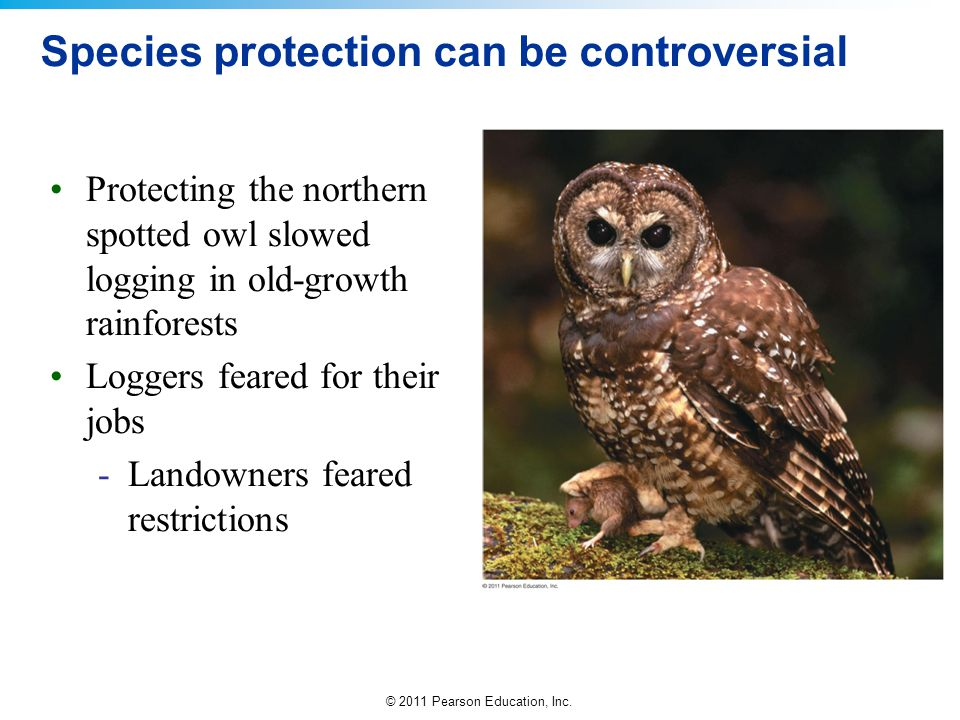 Species protection can be controversial