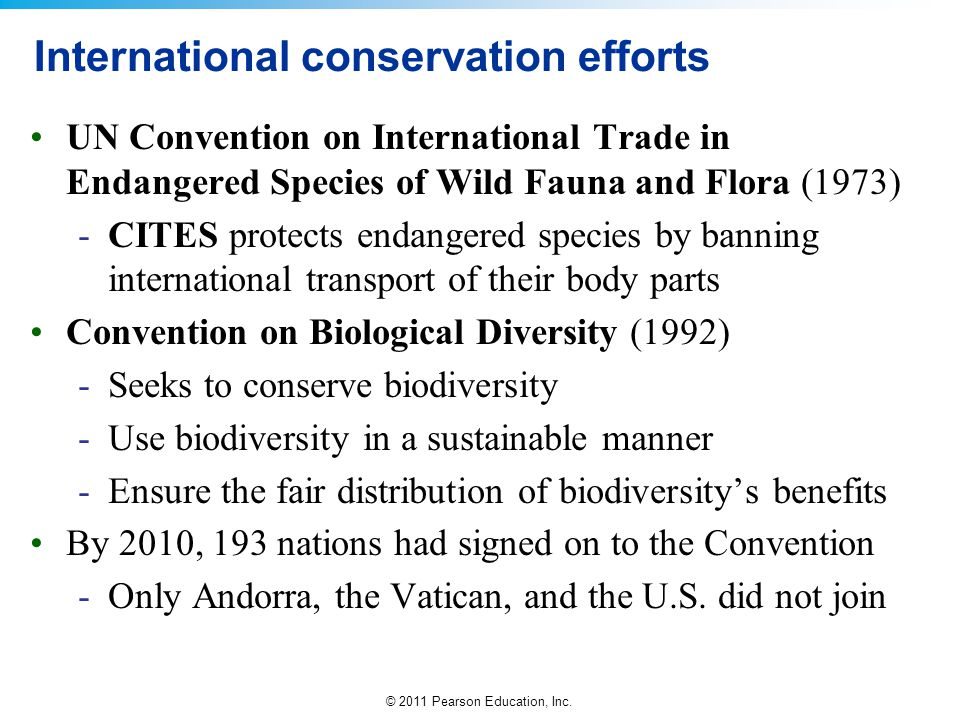 International conservation efforts