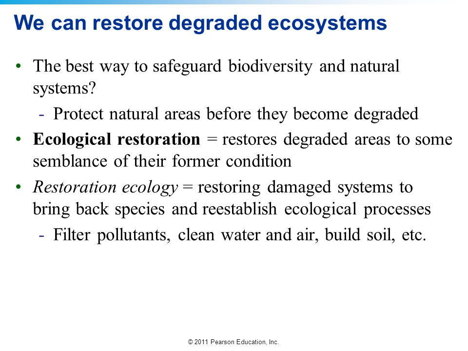 We can restore degraded ecosystems